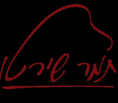 Tamar_Shireto_Logo_b